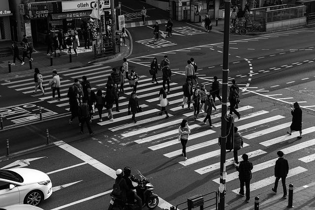 the traffic light pedestrians